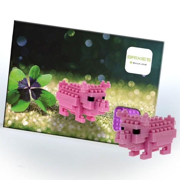 Postkarte Glücksschwein (220.052)