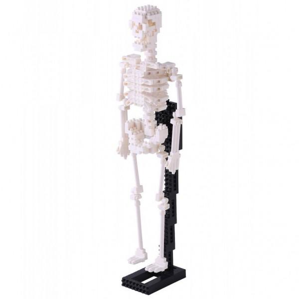 Menschliches Skelett (Nanoblock NBM-014)