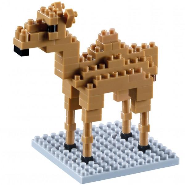 Kamel (200.109)